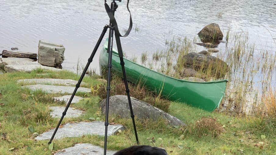 Selv om det er litt kaldt så er kamera mitt varmt. Litt tungt er det jo, men jeg har det ofte med.
